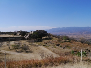 This Zapotec site in Oxaca spun off smaller sites during it's 1000 years.